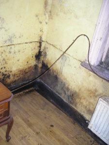 """Diagnostic de l""""humidité d'un logement et choix du traitement sur lille ou comment lutter contre les moisissures des murs et plafond"""