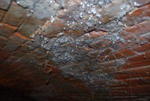 Des gouttes d'eau au plafond de la cave ? la condensation entraine des problèmes d'humidité, des champignons et des moisissures dans le logement