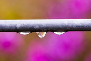 condensation dans uen maison humide