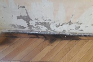 Des remontées capillaires sur les murs, quelles conséquences pour une maison (lille)