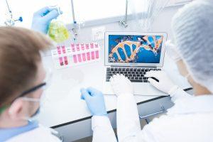 Faire analyser la mérule et prix pour analyse de lamérule